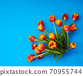 Tulips flowers on natural background. 70955744