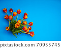 Tulips flowers on natural background. 70955745