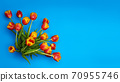 Tulips flowers on natural background. 70955746