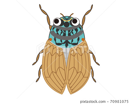 Vector illustration of cicadas 70981075