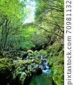 美丽的深山小溪,金地池大坝水上公园森林 70981132