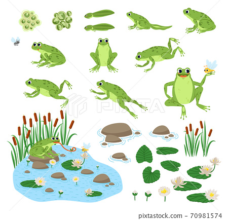 Set of cartoon frog  70981574