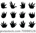 crocodile, footprint, silhouettes 70996526