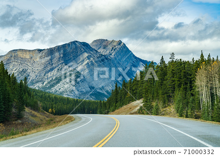 Rural road in the forest with Mount Stelfox in the background. Alberta Highway 11 (David Thompson Hwy), Jasper National Park, Canada. 71000332