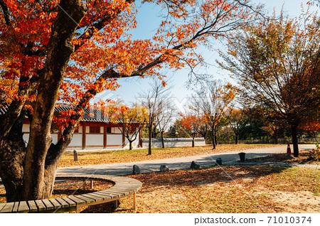 Autumn of Silleuksa Temple in Yeoju, Korea 71010374