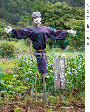 A figurine in the field looking over fence to camera.  71013897