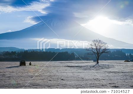 朝日冬季露營地 71014527