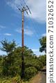 나무 기둥 전주 71032652