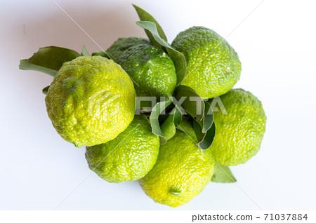 With blue yuzu fruit leaves 71037884