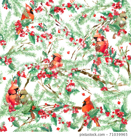 watercolor winter forest background with bird. illustration Christmas tree, mistletoe branch, mistletoe berry, holly branches,snowflake. watercolor texture background 71039965