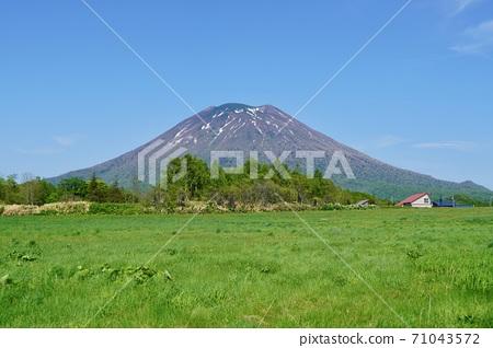 아리 시마 기념관 부근에서 볼 맑은 날의 요 테이 산 71043572