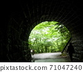 The lush trees on the other side of the tunnel 71047240