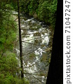 A torrent river seen from a forest in the mountains 71047247