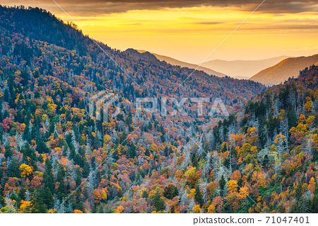Great Smoky Mountains National Park, Tennessee, USA at the Newfound Pass 71047401