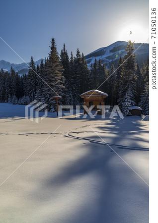 winter landscape nearby Zverovka, Western Tatras (Rohace), Slovakia 71050136
