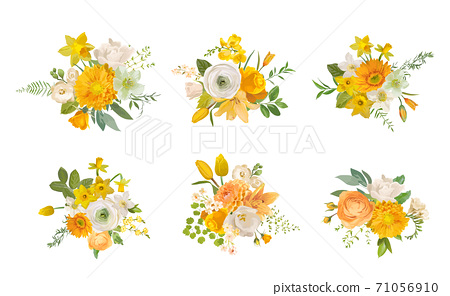 Spring flowers bouquets, yellow daffodil, rose, white fresia, eucalyptus, greenery, fern. Vector design elements 71056910