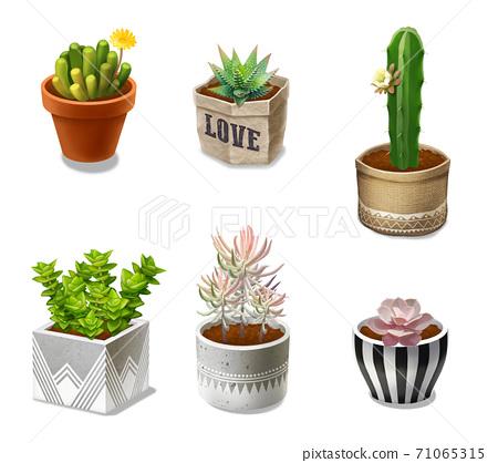 花盆和植物 71065315