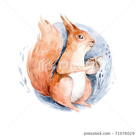 Watercolor Squirrel Sitting On The Snow - Hand Drawn Illustration of animal 71076029