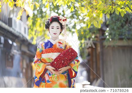 Kyoto Maiko 71078026