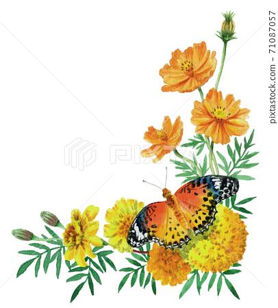 水彩秋花和蝴蝶角架 71087057