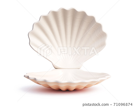 Empty open seashell 3d rendering 71096874