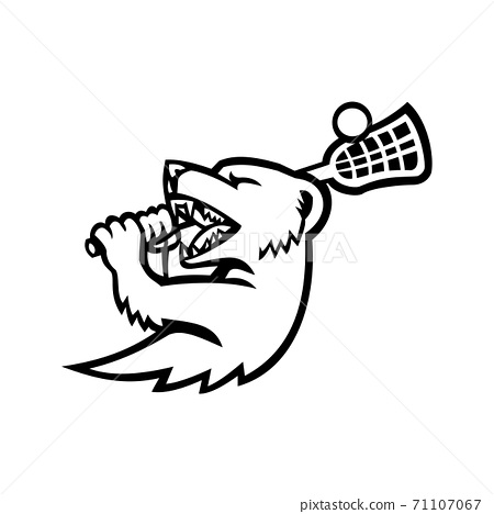 Mongoose With Lacrosse Stock Mascot Black and White 71107067