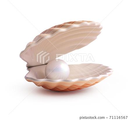 Pearl inside seashell 3d rendering 71116567