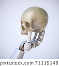Robotic hand holding human scull, artificial intelligence concept, AI takeover, 3d rendering 71119149