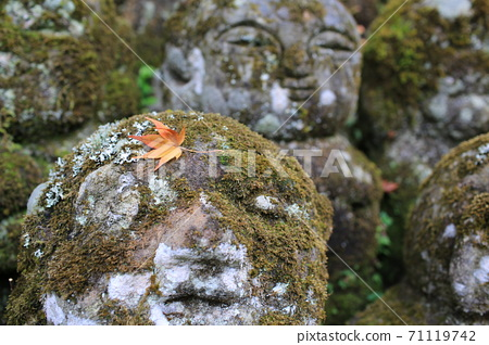 Zen style buddha stone with the growing moss in japan at Otagi nenbutsuji 71119742