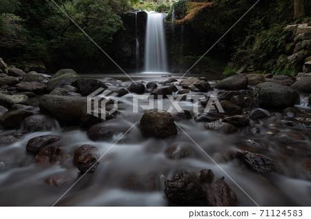 南島原市的Ayu返回瀑布/秋天 71124583