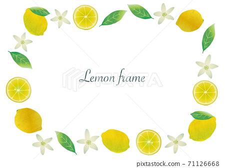 레몬 열매 · 꽃 · 잎 그림 프레임 71126668