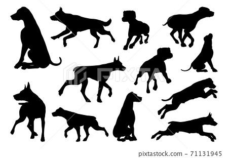 Dog Silhouettes Animal Set 71131945