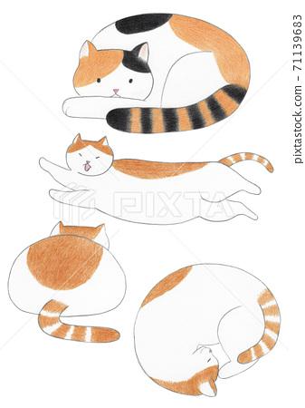 고양이 색연필 그림 71139683