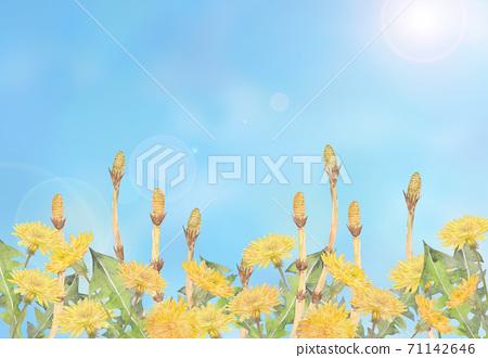 츠쿠시와 민들레와 푸른 하늘 71142646