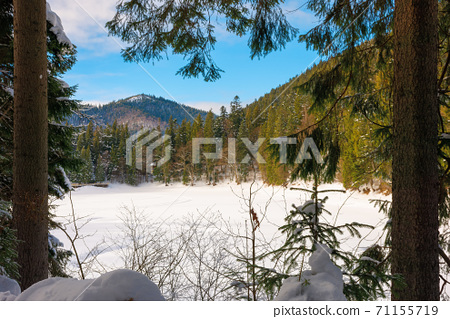 snow covered mountain lake among the forest. green spruce trees on the shore. beautiful sunny weather. clouds on the sky 71155719