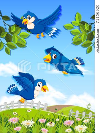Happy bird in the nature 71156920