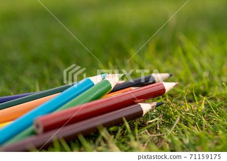색연필 71159175