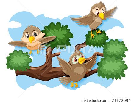 Happy bird flying in nature 71172094