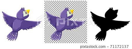 Set of bird character 71172137