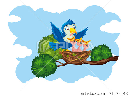 Chicks and its mother bird in nature 71172148