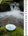 Aquamarine Sazareishi on a plate on moss with a swamp in the background 71172559