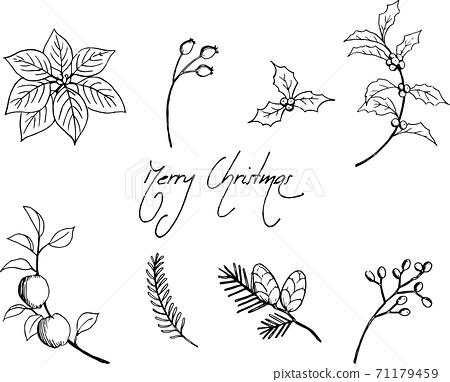 聖誕植物材料集 71179459