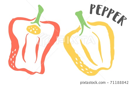 Bell Pepper hand painted with ink brush isolated on white background 71188842