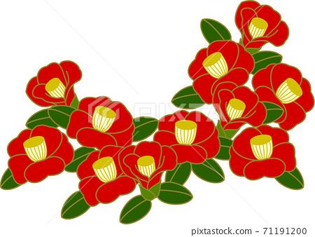 Camellia flower 71191200