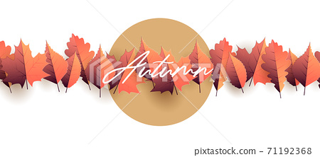Autumn seasonal graphic element with autumn leaves illustration forming straight line of leaves on white backdrop with circle sun behind for copy 71192368
