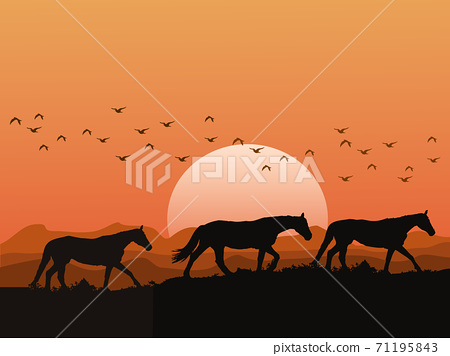 The silhouette of a herd of horses on the hills at sunset has mountains and orange sky as background 71195843