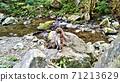 猴子的父母和孩子,在坎巴瀑布山stream的岩石上 71213629