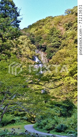 一群野生猴子在草坪和the場瀑布上嬉戲,被選為日本100座最佳瀑布之一 71213631