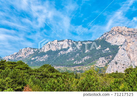 High rocky mountains on blue sky background. Green pine forest on the mountainside. 71217525