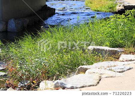 시냇물이 흐르는 아름다운 풍경 71220223